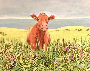 Summer Cow by Ruth Wood for Kilbaha Gallery