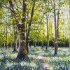 Bluebell Walk Muckross by Mark Eldred for Kilbaha Gallery