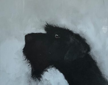 Dog on Blue Heidi Wickham