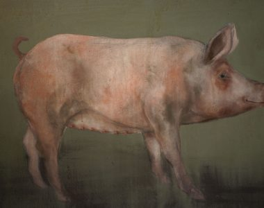 Pig by Heidi Wickham for Kilbaha Gallery Buy Irish Art Online