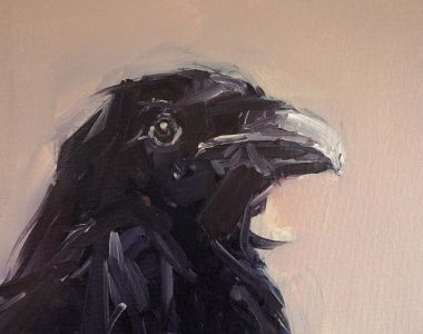 Jackdaw oil on canvas by Kaye Maahs for Kilbaha Gallery Buy Irish Art Online
