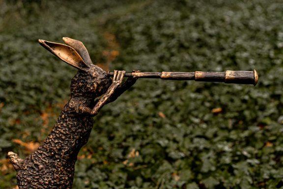 Bronze Hare Donnacha Cahill